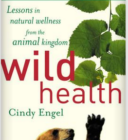 wild-health-book-cover